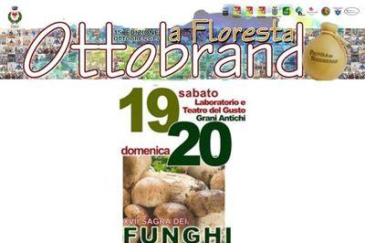 19 e 20 ottobre - XVII sagra dei funghi - Ottobrando 2019