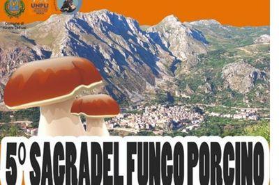 19/10/2019 - V Sagra del fungo porcino - h. 20:30