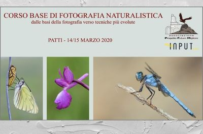Corso di Fotografia Naturalistica - Associazione PFM